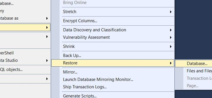 SQL Database Cannot Be Opened. It is In The Middle of a Restore hatası